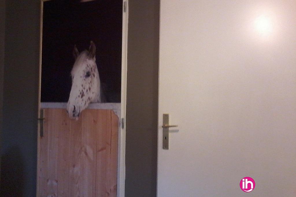 l'appartement est dans un centre d'équitation