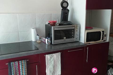 Location de meublé :  Appartement  proche centrale EDFde 28M2 à Clonas sur Vareze