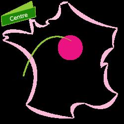 Cliquez ici pour voir tous les biens de la Région Centre - Touraine