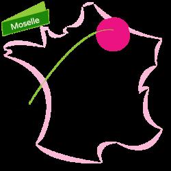 Cliquez ici pour voir tous les biens de la Moselle